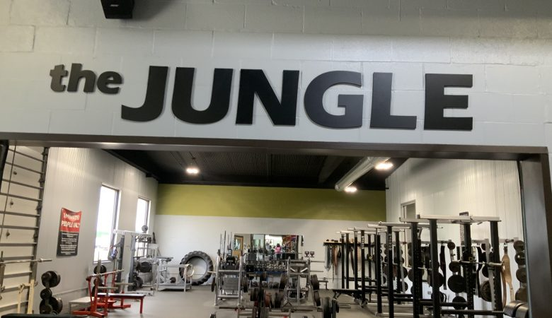 ,,Jungle The