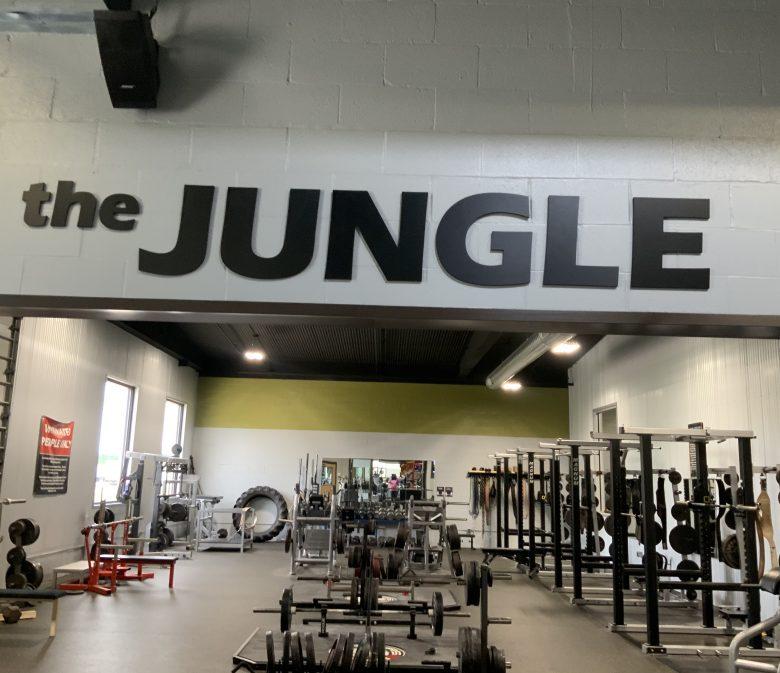 ,,Jungle The